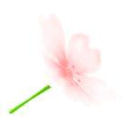 acnh parapluie fleurs de cerisier