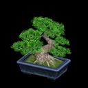 acnh bonsai pin japonais