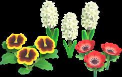 fleur amitié
