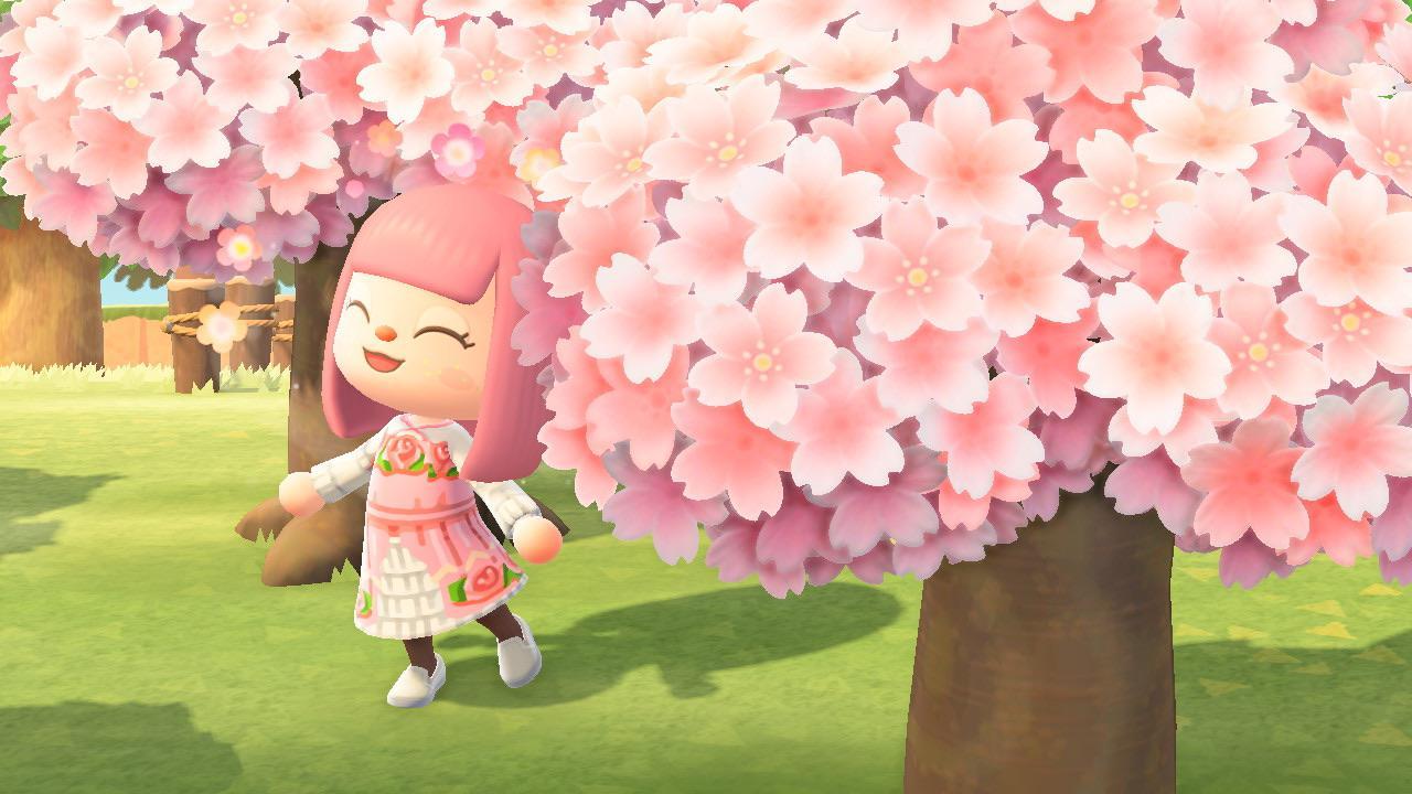 acnh recette pétales de fleurs de cerisier